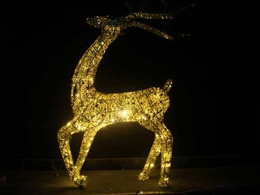 LED Crystal Deer